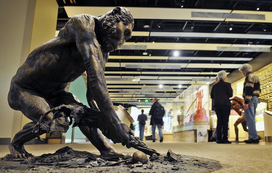 379 Выставка Происхождение человека