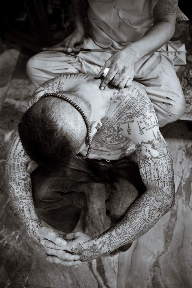 479 pelindung tato Thailand
