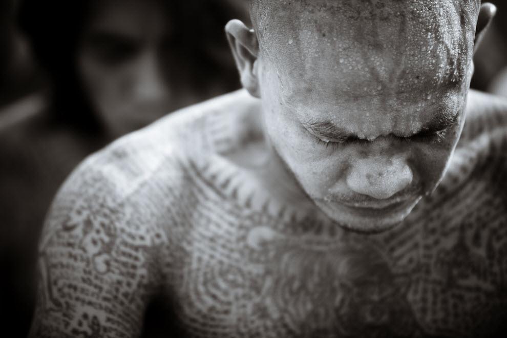 568 pelindung tato Thailand