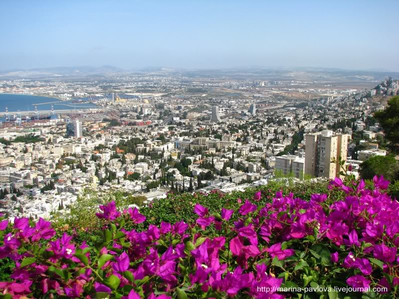 images38 Хайфа. Израиль