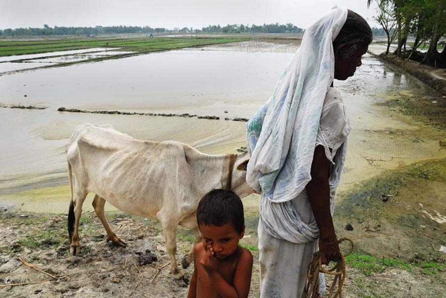 1101 Детская смертность в Индии