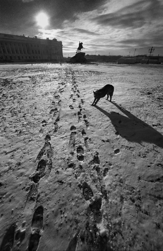 2234 520x800 Петербург глазами фотографа Александра Петросяна