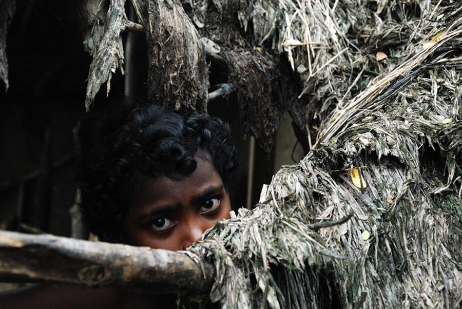 919 Детская смертность в Индии
