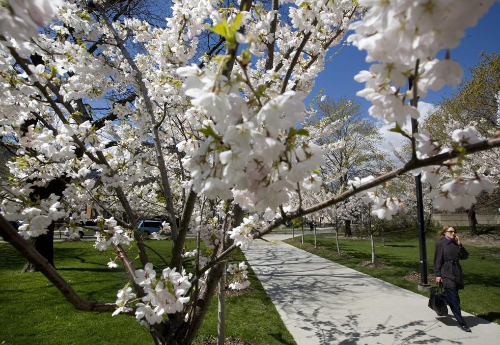 weather9 Погода в апреле