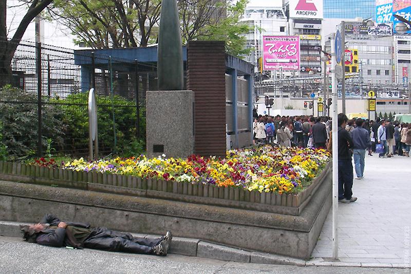 9510 100 фотофактов об Японии с комментариями