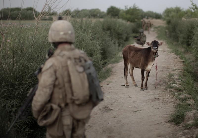 Афганистан апрель 2010