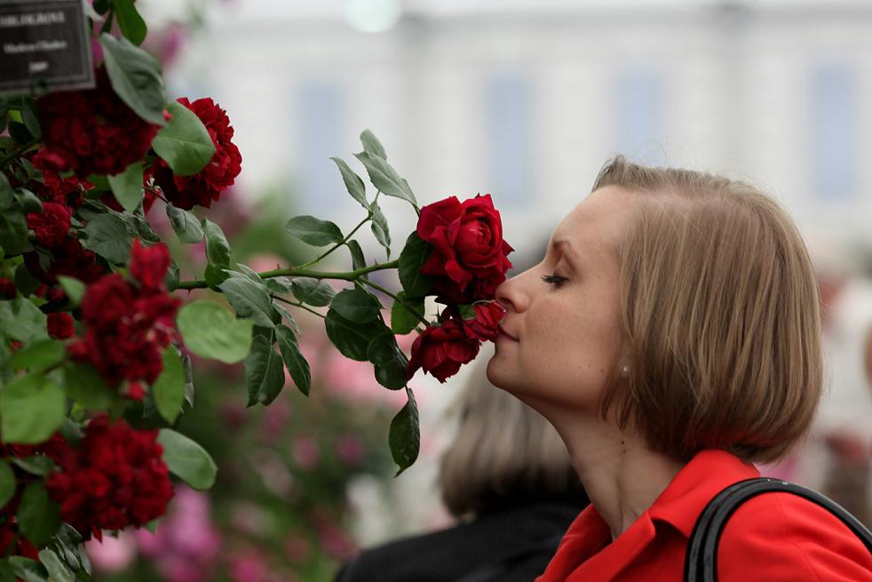 flowersF Королевская выставка цветов в Челси