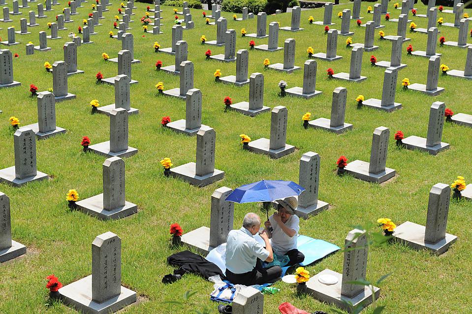 Что сажают на могиле 88