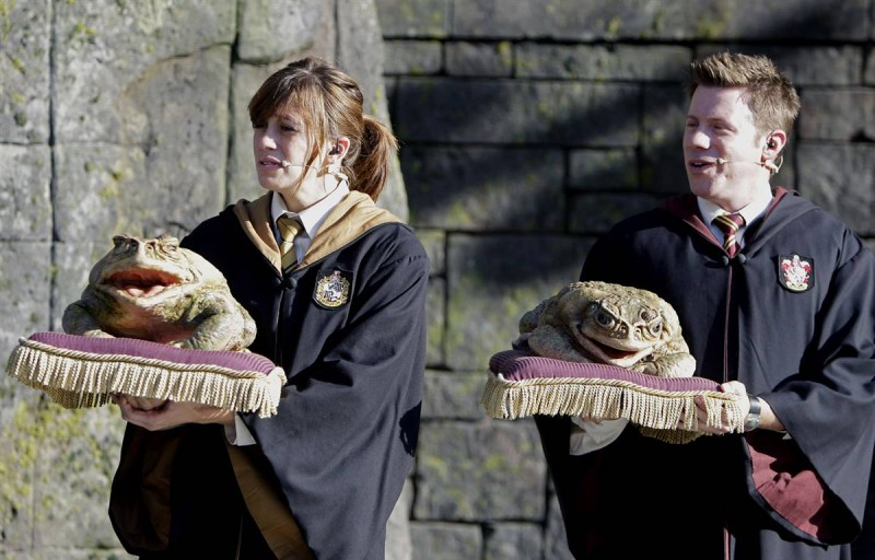 437 800x512 Волшебный мир Гарри Поттера