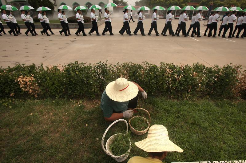 Eco-burial ceremony in Tianjin, China