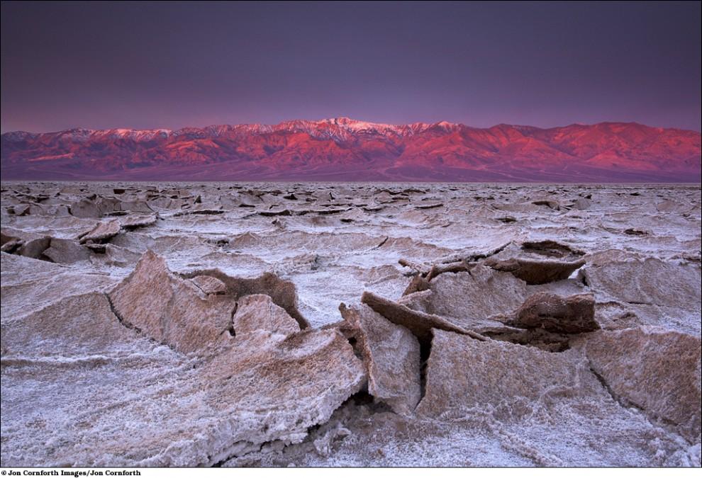 2010 International Conservation Photography Awards