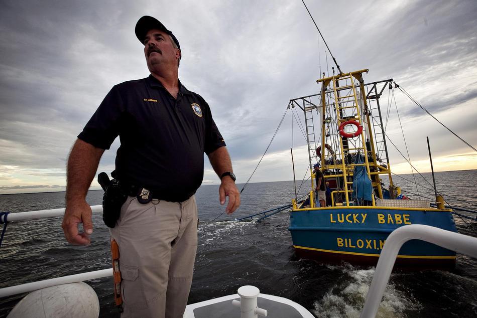 Вскрытие показало: нефть в заливе не нужна природе