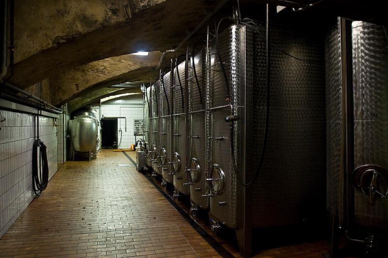 Немного о франконском виноделии и о вине