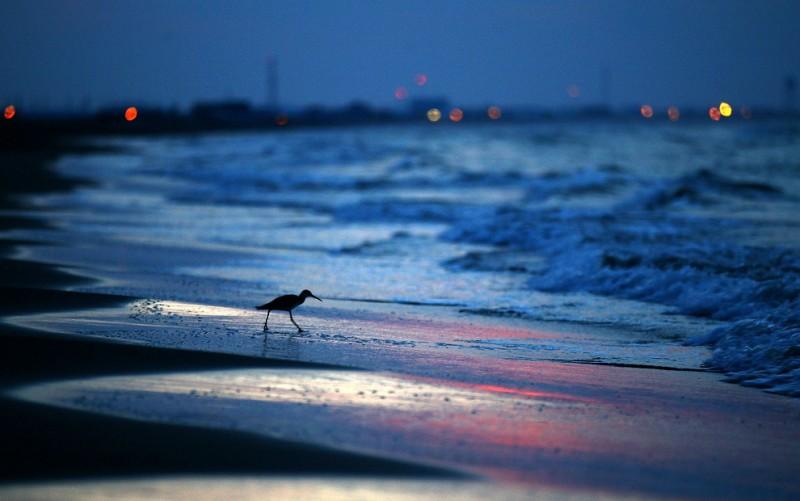 Утечка в заливе устранена