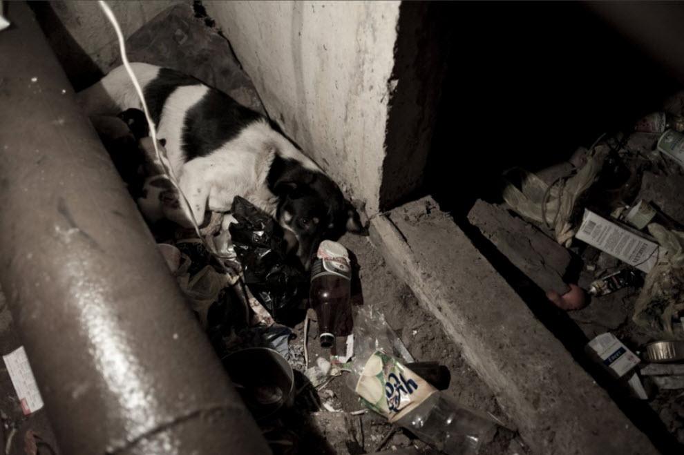homeless26 Украинские беспризорники