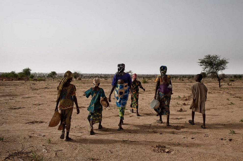 nigerfoodcrisis10 990x657 Продовольственный кризис в Нигере