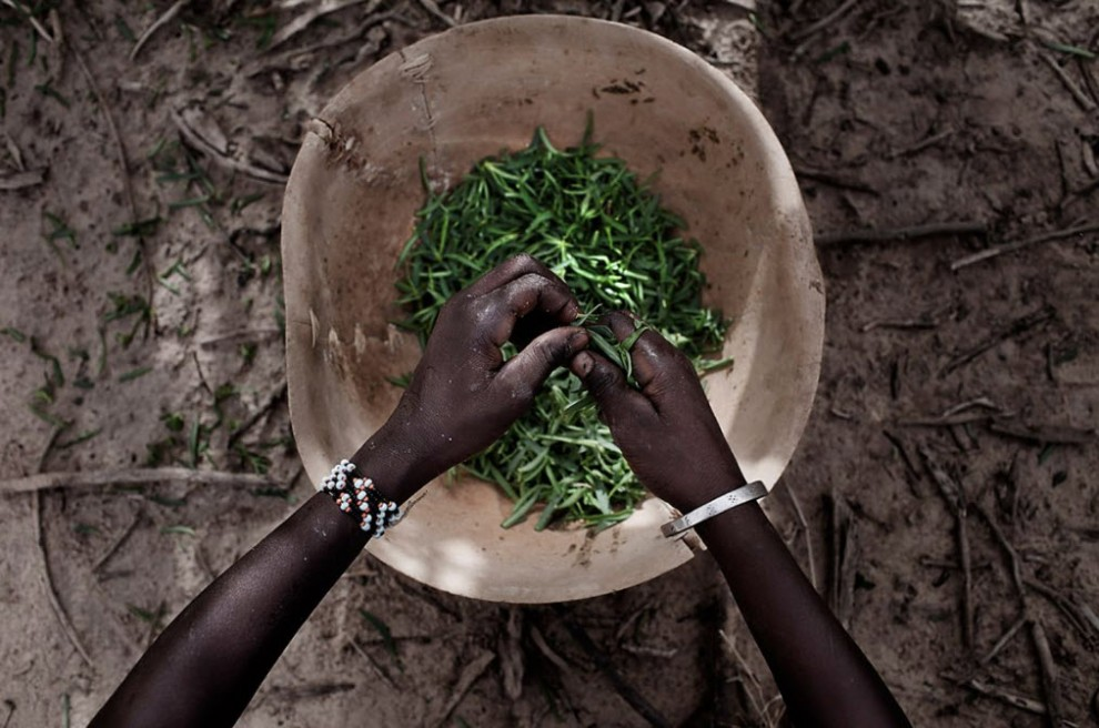 nigerfoodcrisis20 990x656 Продовольственный кризис в Нигере