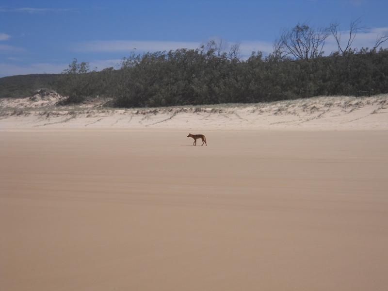 Австралийский рай