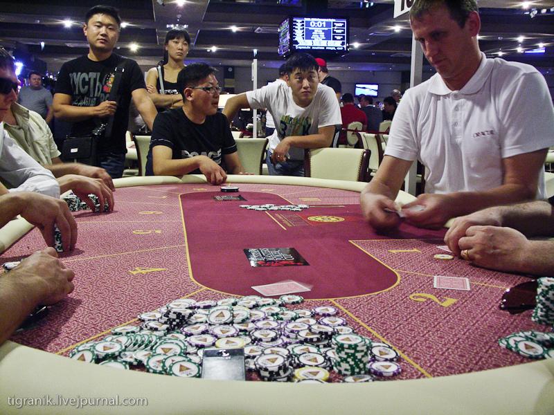 Лесного торрент школа скачать покера дмитрия