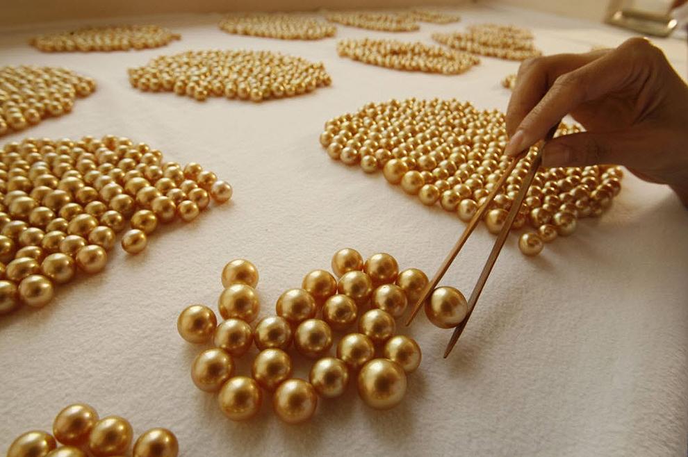golden pearls30 Золотой жемчуг