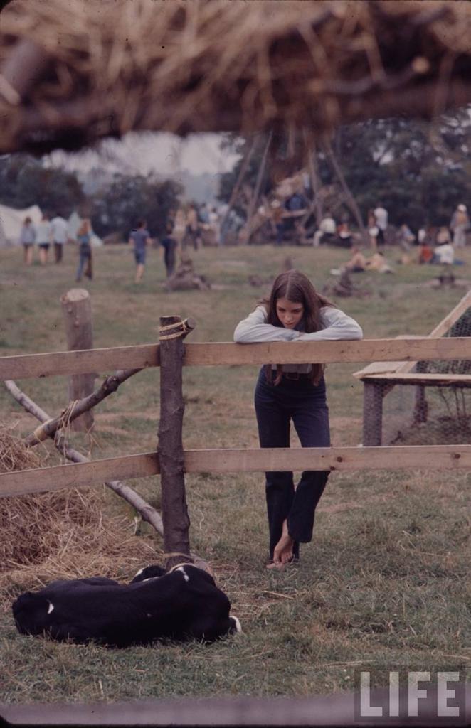 0 41459 Вудсток 1969 года на снимках журнала Life