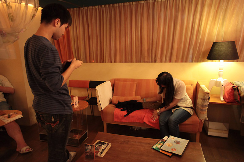 1347 Кото кафе в Осаке