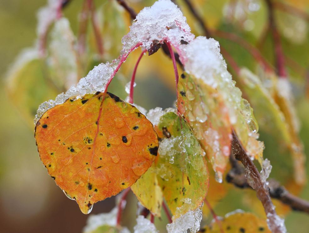 Красочное время года