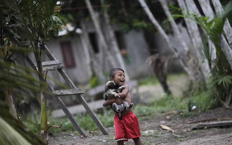 0333 Dokter di belantara hutan tropis di Brazil