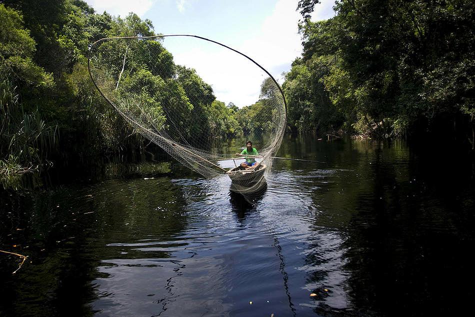 0410 Deforestasi di Sumatera