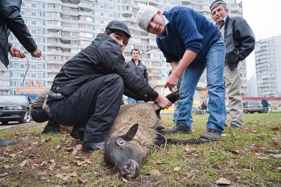 0634 Праздник жертвоприношения Курбан Байрам в Москве