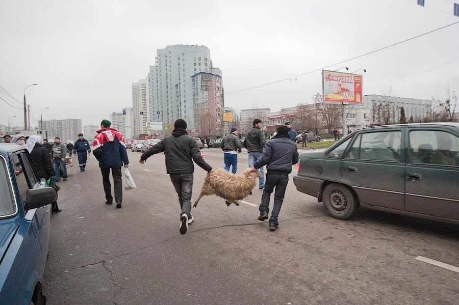 0833 Праздник жертвоприношения Курбан Байрам в Москве