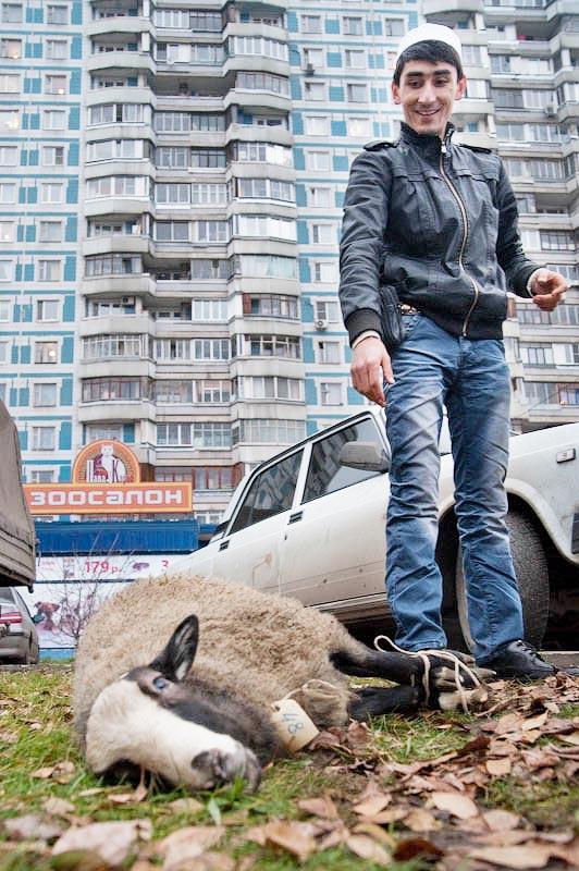 1075 Праздник жертвоприношения Курбан Байрам в Москве
