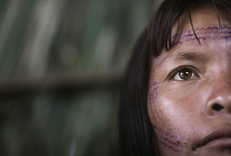 1356 Dokter di belantara hutan tropis di Brazil