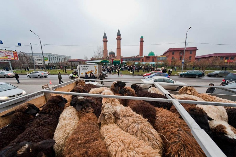 Праздник жертвоприношения Курбан-Байрам в Москве