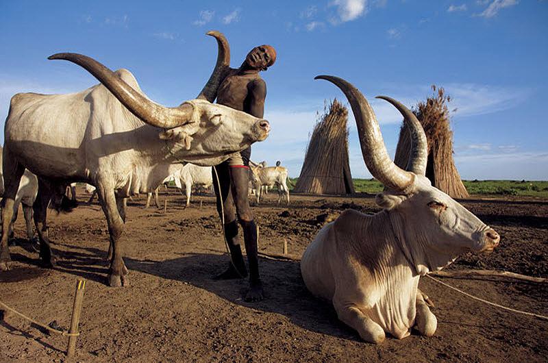 Шаткий мир в Южном Судане [Фоторепортаж]