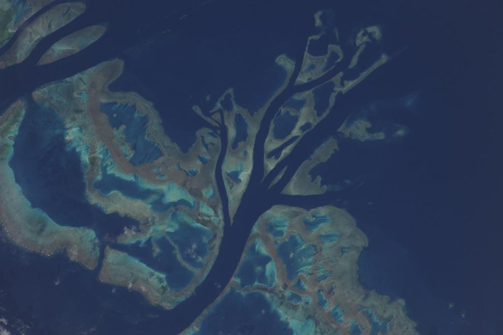 2145 Невероятные фото из космоса астронавта Дугласа Уилока