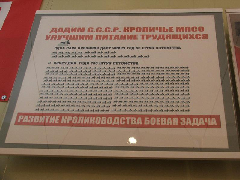 http://bigpicture.ru/wp-content/uploads/2010/11/3019.jpg