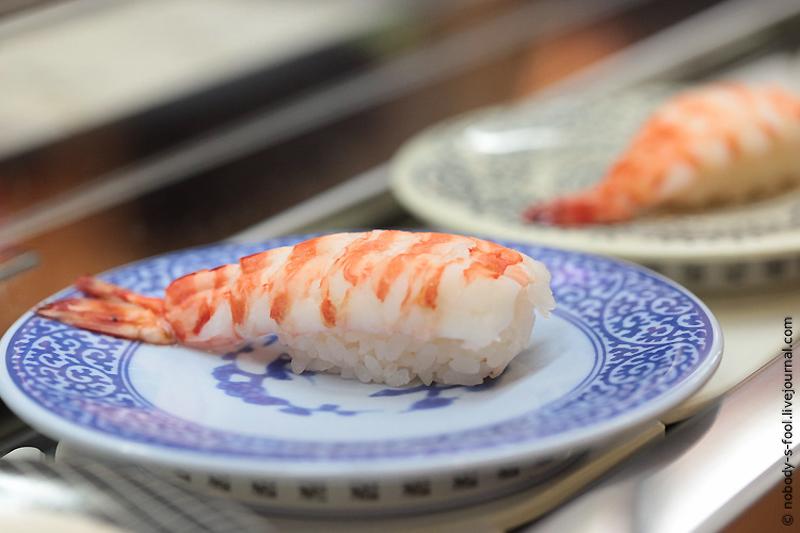 484 Репортаж из конвейерного ресторана суси