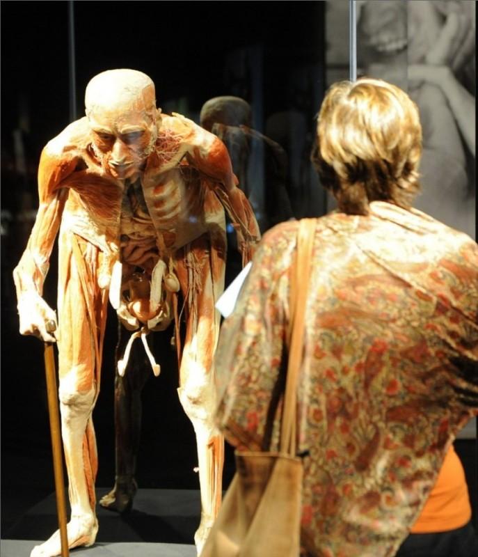 001scgkp 687x800 Выставка «Миры тела»   искусство или глумление?