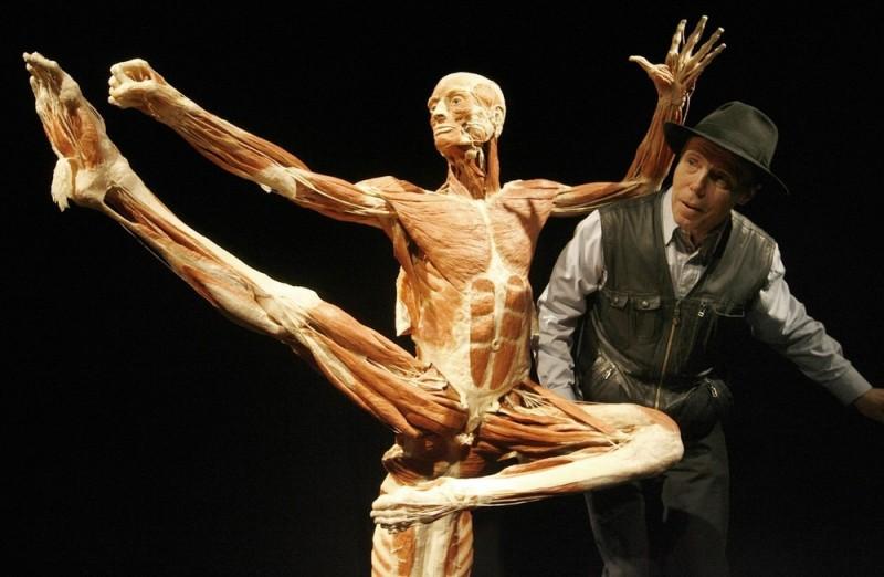001spgtc 800x522 Выставка «Миры тела»   искусство или глумление?