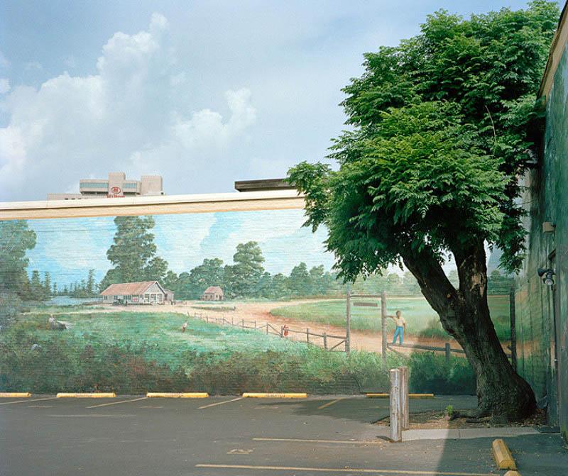 0045 Городской лес