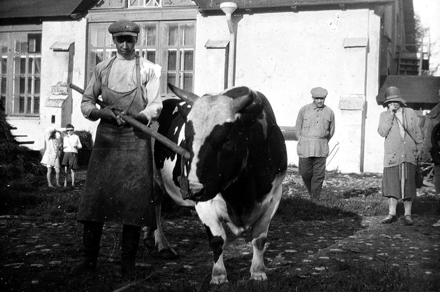 1961 По Советскому Союзу 1930 х годов