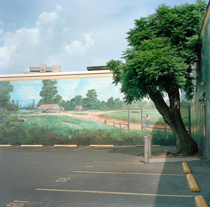 685 Городской лес