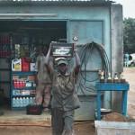 Черное и синее – Кот-д'Ивуар