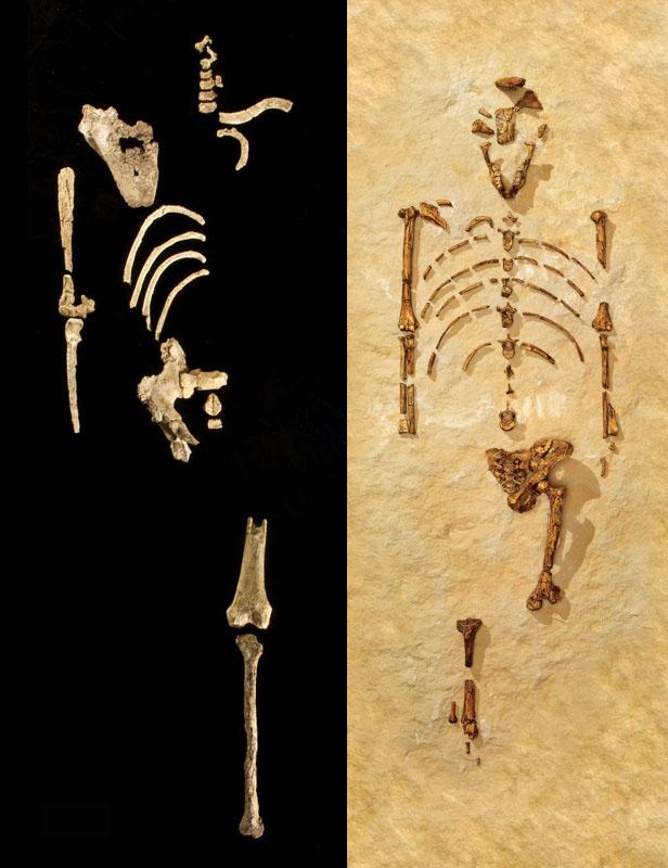 083 Самые крупные археологические открытия 2010 года