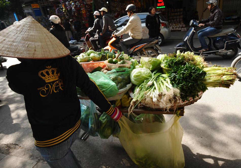 Vietnam Ekonomi