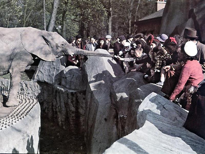 918 Франция времен немецкой оккупации