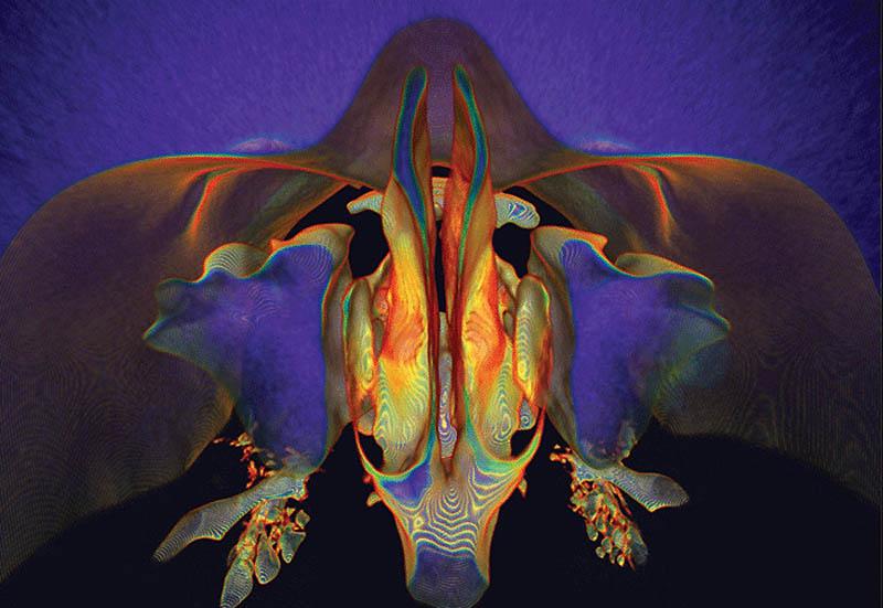 0546 Психоделические картины, созданные наукой