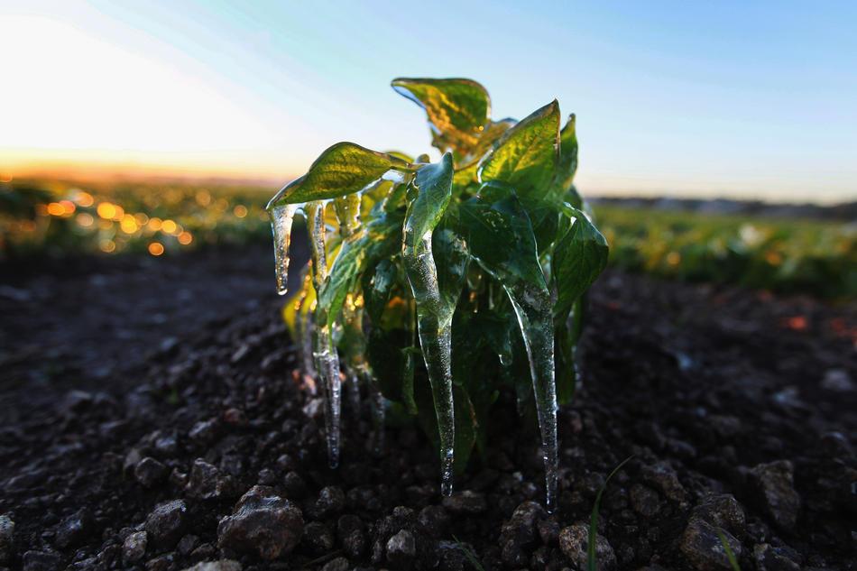 Последний месяц холодной зимы