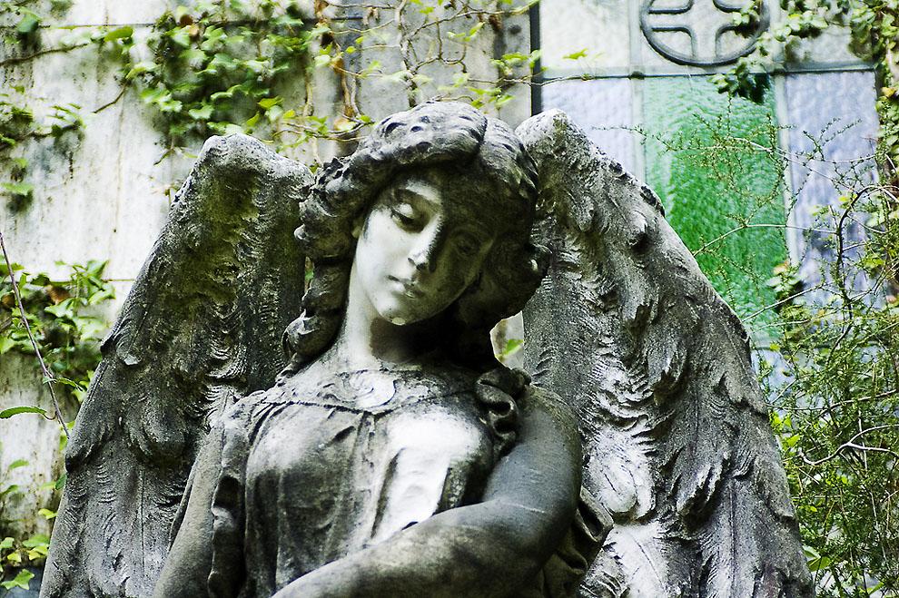 4112838413 253b4993dd b Старинное кладбище Стальено в Генуе